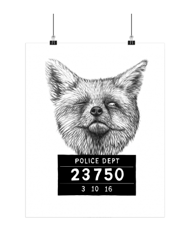 Boas Grafik billede af ræv