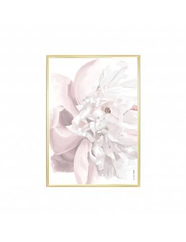 Livink Soft flower rose plakat