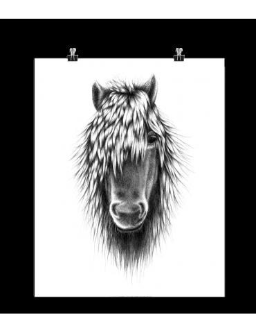 Boas Grafik billede af hest