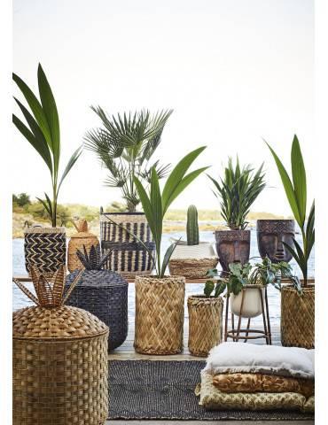 Madam Stoltz potte på bambusben med mange planter