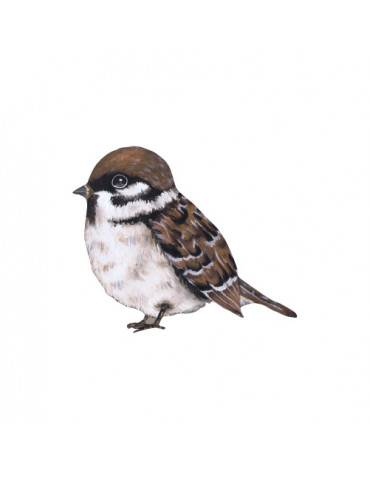 Thats Mine Wallsticker The waiting sparrow